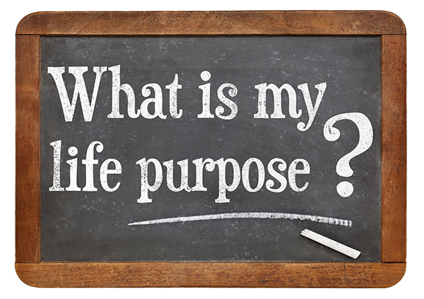 What is your life purpose question