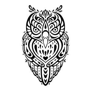 Owl - Wisdom