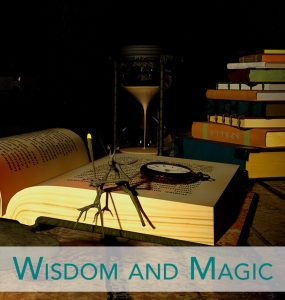 wisdom and magic sessions and programs